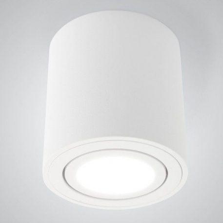 Lampa sufitowa - C1300-1L WH