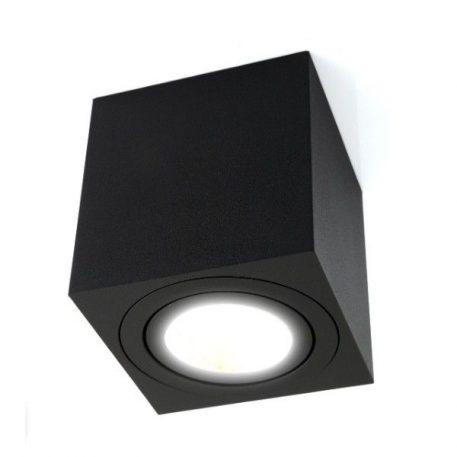 Oczko/spot - C1305-1L BL